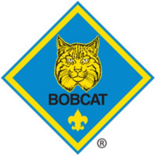 Pack 607 Bobcat Badge